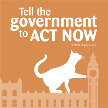 Tell the Government to Act Now