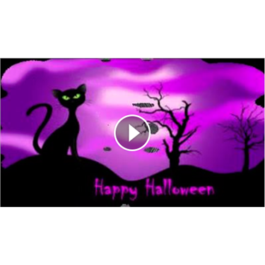Cats Protection Halloween Video