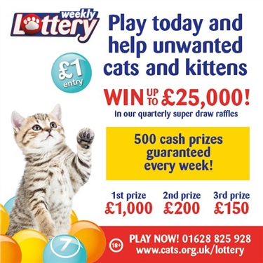 Weekly Lottery - Win With Cats Protection