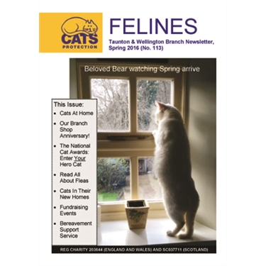 Spring 2016 Felines Newsletter