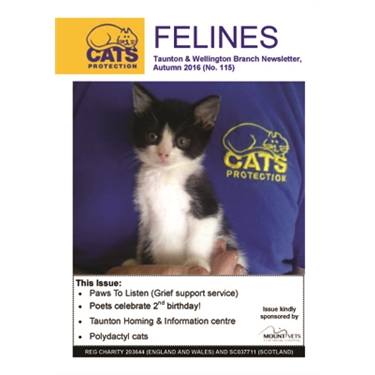 Felines newsletter Autumn 2016