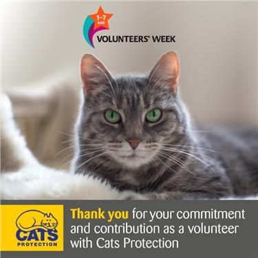 Volunteers Week 1st - 7th June