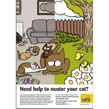 NEED HELP TO NEUTER YOUR CAT?