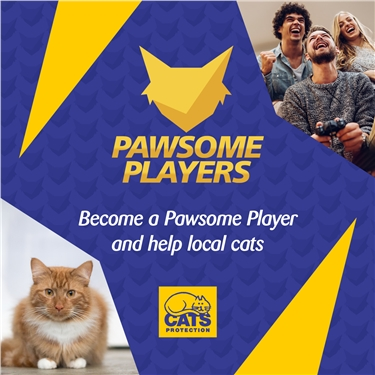 Pawsome Players helping cats