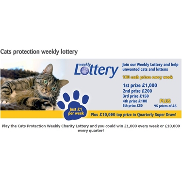 Join our weekly lottery to support cats - win £1000 a week!