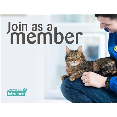 Become a Cats Protection Member