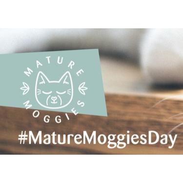 Mature Moggies Day - 16 June 2021
