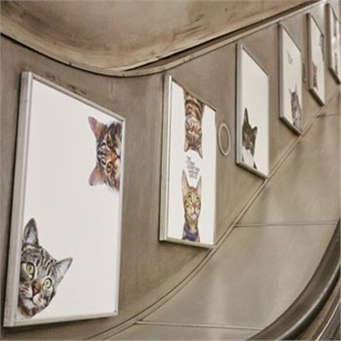 Tube station ads swapped for pictures of cats