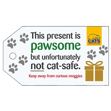 Help keep your cats safe at Christmas!