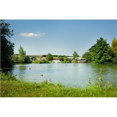 Sumners Ponds