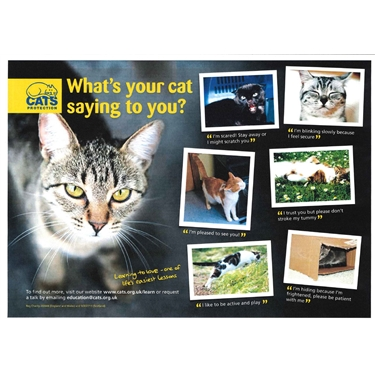 What is your cat saying to you? Free talks are available to educate people and children about cats