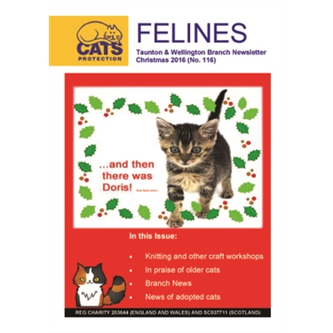 Felines Newsletter Christmas 2016
