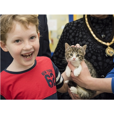 Inspirational youngster donates prize money to help unwanted cats