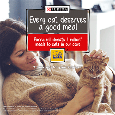 Every Cat Deserves campaign