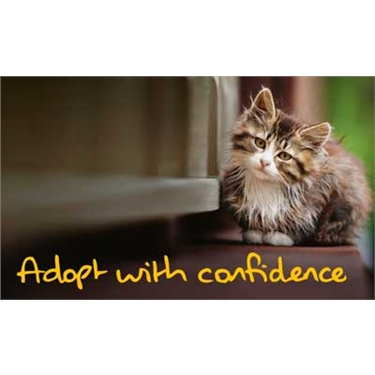 Adopt with Confidence