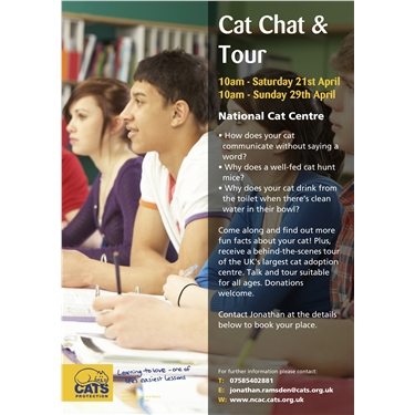 Free Cat Chats & Tour