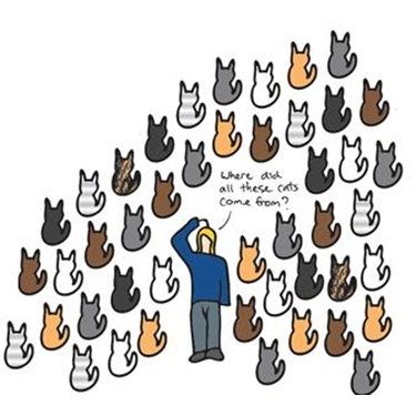 The importance of neutering........