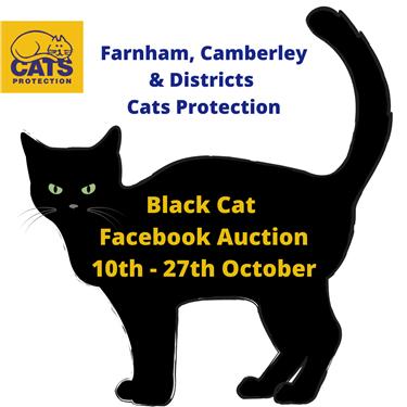 Our Black Cat Facebook Auction is Live!
