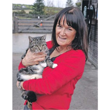 Cat and owner reunited after grand journey