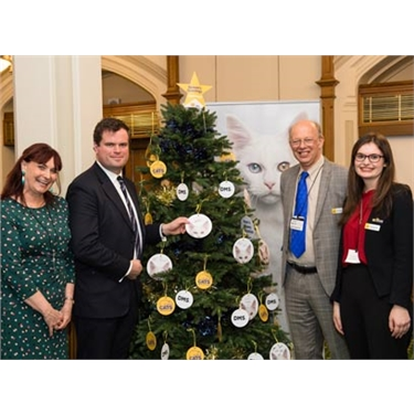 Politicians feline festive at Cats Protection