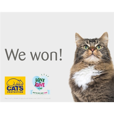 Cats Protection Wins the Pets at Home VIP Vote