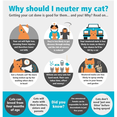 Free Neutering Vouchers
