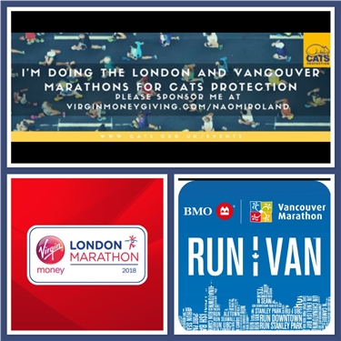 Please sponsor Naomi who is running both the London and Vancouver marathons - two marathons in two weeks!