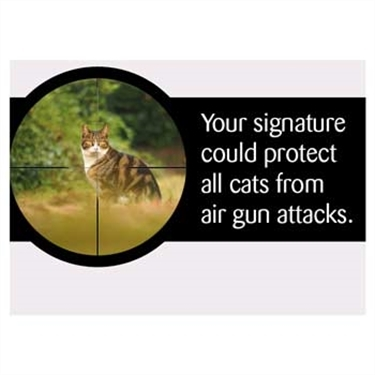 Cat lovers urged to join demands to extend air gun laws to England and Wales