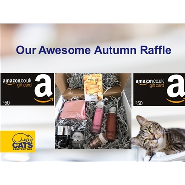 Enter our awesome autumn raffle and help raise funds for Telford branch kittens!