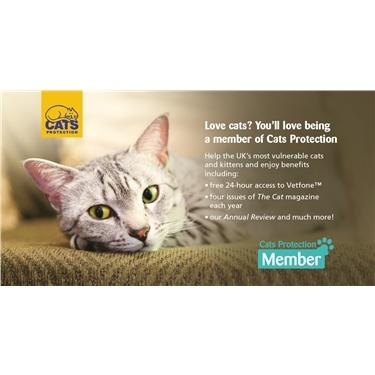 Become a member of Cats Protection