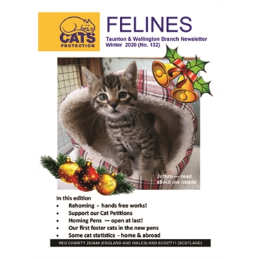 Felines Newsletter Winter 2020