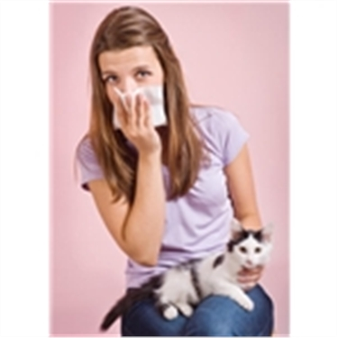 Oh-no! Allergic to cats!