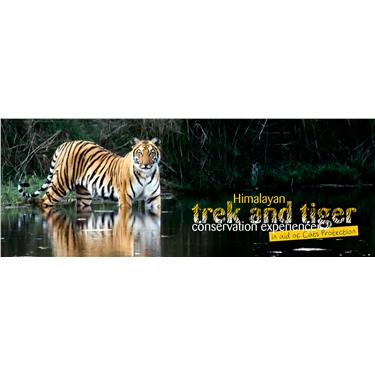 Himalayan Trek and Tiger Conservation Experience in aid of Teignbridge and Totnes Cats Protection