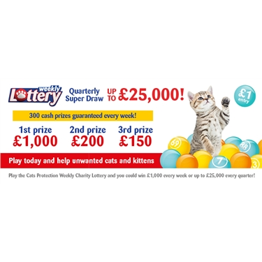 Play the Cats Protection Weekly Lottery and help the cats