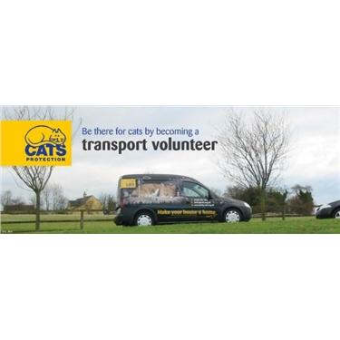 Transport Volunteer Wanted