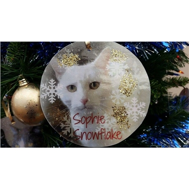 Cats and Christmas at Brighstone Tree Festival