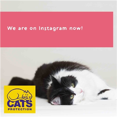 Instagram - here we come!