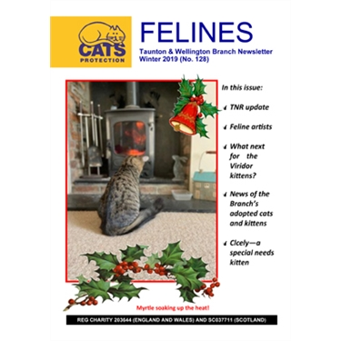 Felines newsletter Winter 2019