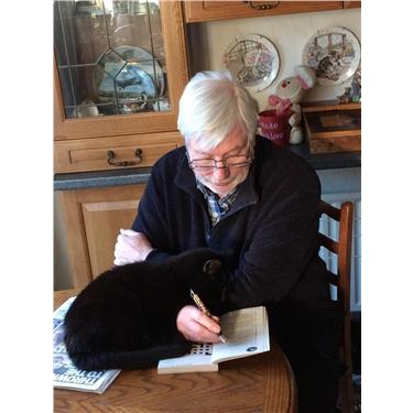 Black Cats Make Great Companions
