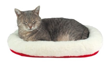 Amazon Wish List helps cats in care