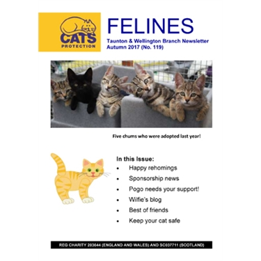 Felines Newsletter Autumn 2017