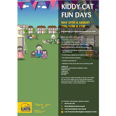 Book on to our Kiddy Cat Fun Days