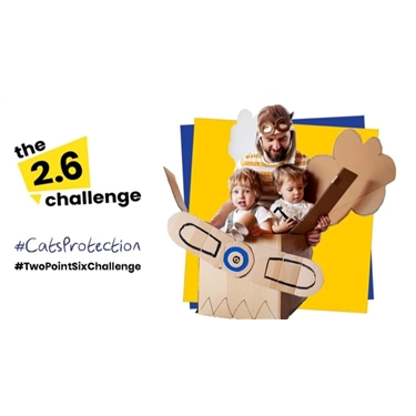 The 2.6 Challenge - Get involved, have fun, help cats!