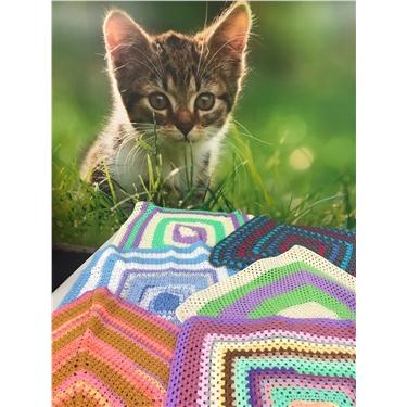 Calling all keen knitters