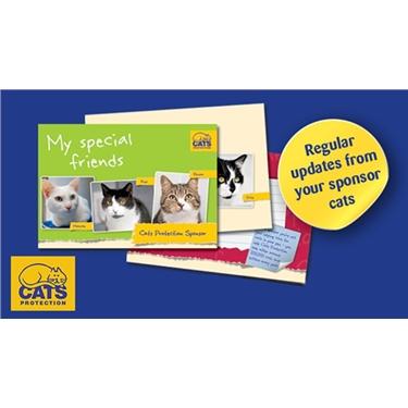 Become a cat sponsor