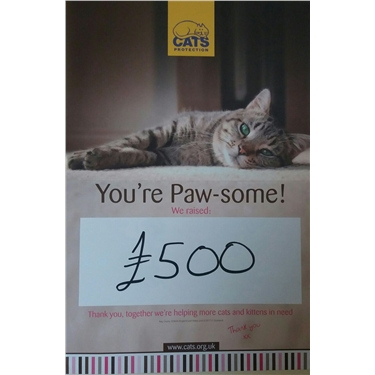 Pawsome Tea Party raised £500