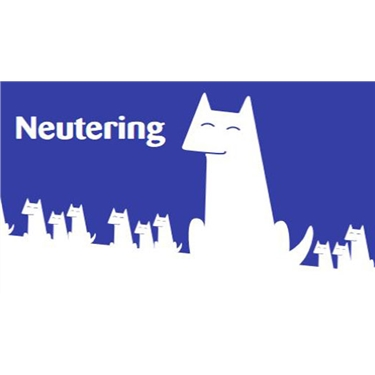 Neutering now available