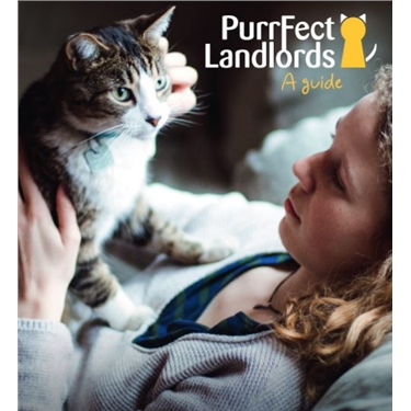 Cats Protection Purrfect Landlords Campaign