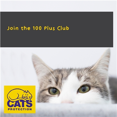 Join our 100 Plus Club.