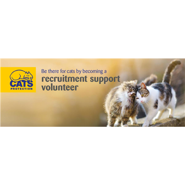 Join Our Team as a Recruitment Support Volunteer